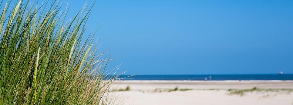 Haus delft strand meer for Insel juist ferienwohnung